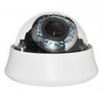 Видеокамера купольная цветная SVT135